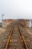 有薄雾的铁路线 免版税库存照片