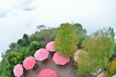 有薄雾的雨开放红色伞 图库摄影