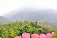 有薄雾的雨开放红色伞 免版税库存图片