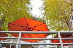 有薄雾的雨开放红色伞 库存照片