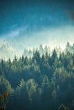 有薄雾的雾山视图 免版税图库摄影