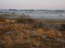 有薄雾的领域 库存图片