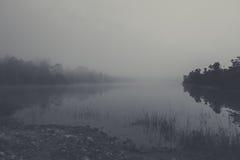有薄雾的风景 免版税库存照片