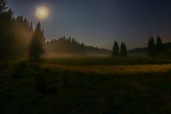 有薄雾的魔术 免版税库存图片
