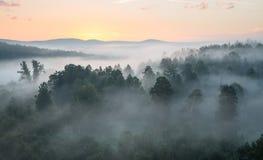 有薄雾的黎明 免版税图库摄影