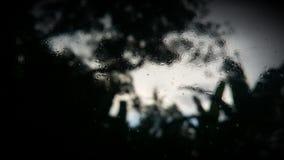有薄雾的玻璃 图库摄影