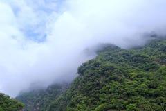 有薄雾的绿色山 免版税库存照片