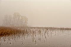 有薄雾的11月早晨 库存照片