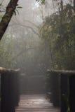 有薄雾的God& x27; s窗口 免版税库存照片