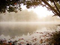有薄雾秋天的湖 库存图片