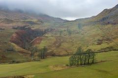 有薄雾苏格兰的高地 免版税图库摄影