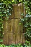 有藤的木篱芭 库存照片