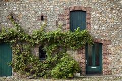 有藤的老被恢复的农舍墙壁 免版税库存图片