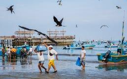有虾蓝色容器的赛跑者从小船去称待售, 免版税库存图片