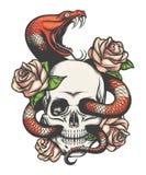 有蛇和玫瑰的头骨 库存例证