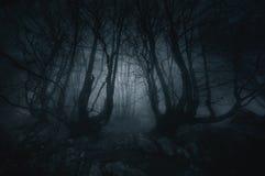 有蠕动的树的恶梦森林 免版税库存照片