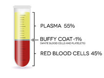 有血细胞的试管 免版税图库摄影