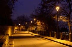有街灯的路 免版税库存图片