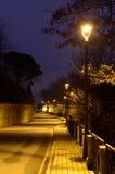 有街灯的路 免版税图库摄影