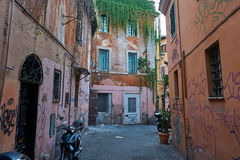 有街道画和植物的被毁坏的房子 库存照片