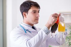 有袋子的医生血浆在医院 库存图片
