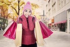 有袋子的时髦的女人 库存图片