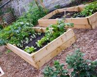 有被上升的床的土气国家菜&花园 库存图片