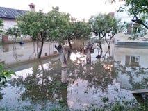 有被充斥的果树园的议院在洪水以后的后院 免版税库存照片