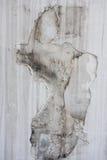 有被剥皮的墙纸的白色墙壁 免版税库存照片