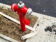 有被打开的封印和一条长的白色灭火水龙带的红火消防栓没有在新的草坪的水一条最近柏油路的 库存照片
