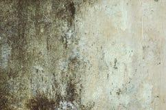有被抓的老白色油漆的老肮脏的白色墙壁 库存图片