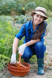 有被收获的红萝卜篮子的妇女  免版税库存照片