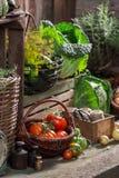 有被收获的蔬菜和水果的老餐具室 库存图片