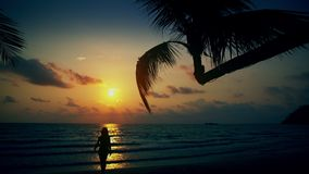 有被晒黑的皮肤和长的头发的无忧无虑的女孩享受在热带海滩的暑假在背景海和美好的日落 股票录像
