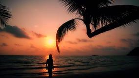 有被晒黑的皮肤的无忧无虑的女孩和长的头发享受在热带海滩的假期在背景海和美好的日落 股票录像
