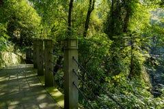 有被束缚的石栏杆的支的地衣隐蔽的道路在木质的mounta 免版税库存照片