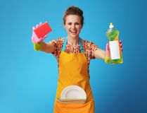 有被洗涤的板材陈列海绵和洗涤剂的妇女 免版税库存照片