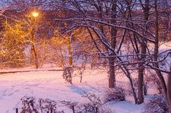 有被点燃的灯笼的公园在冬天 库存照片