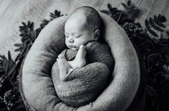 有被编织的帽子的新出生的睡觉的男婴 图库摄影