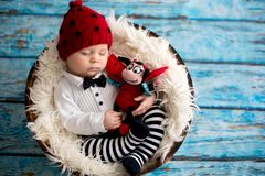 有被编织的瓢虫帽子和裤子的小男婴在篮子 免版税库存照片