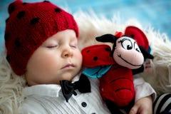 有被编织的瓢虫帽子和裤子的小男婴在篮子 库存图片