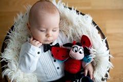 有被编织的瓢虫帽子和裤子的小男婴在篮子 免版税库存图片