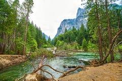 有被连根拔的树和山的发怒的河在背景中在优胜美地 免版税库存照片