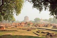 有被破坏的寺庙墙壁的绿色公园和神圣的Dhamekh Stupa在鹿野苑 印度 免版税库存图片