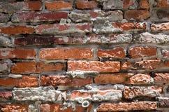 有被洒的白色膏药的老葡萄酒红砖墙壁 免版税库存照片
