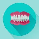 有裁减路线的假牙在白色背景 与长的阴影的平的样式象 免版税库存图片