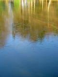 有裂痕的冰冷的湖秋天树反射 免版税库存照片