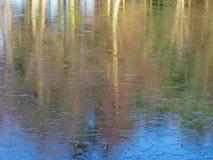有裂痕的冰冷的湖秋天树反射 库存图片