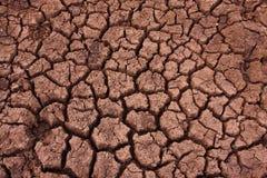 有裂痕的土壤 免版税库存图片