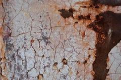 有裂痕的油漆和铁锈纹理 免版税库存照片